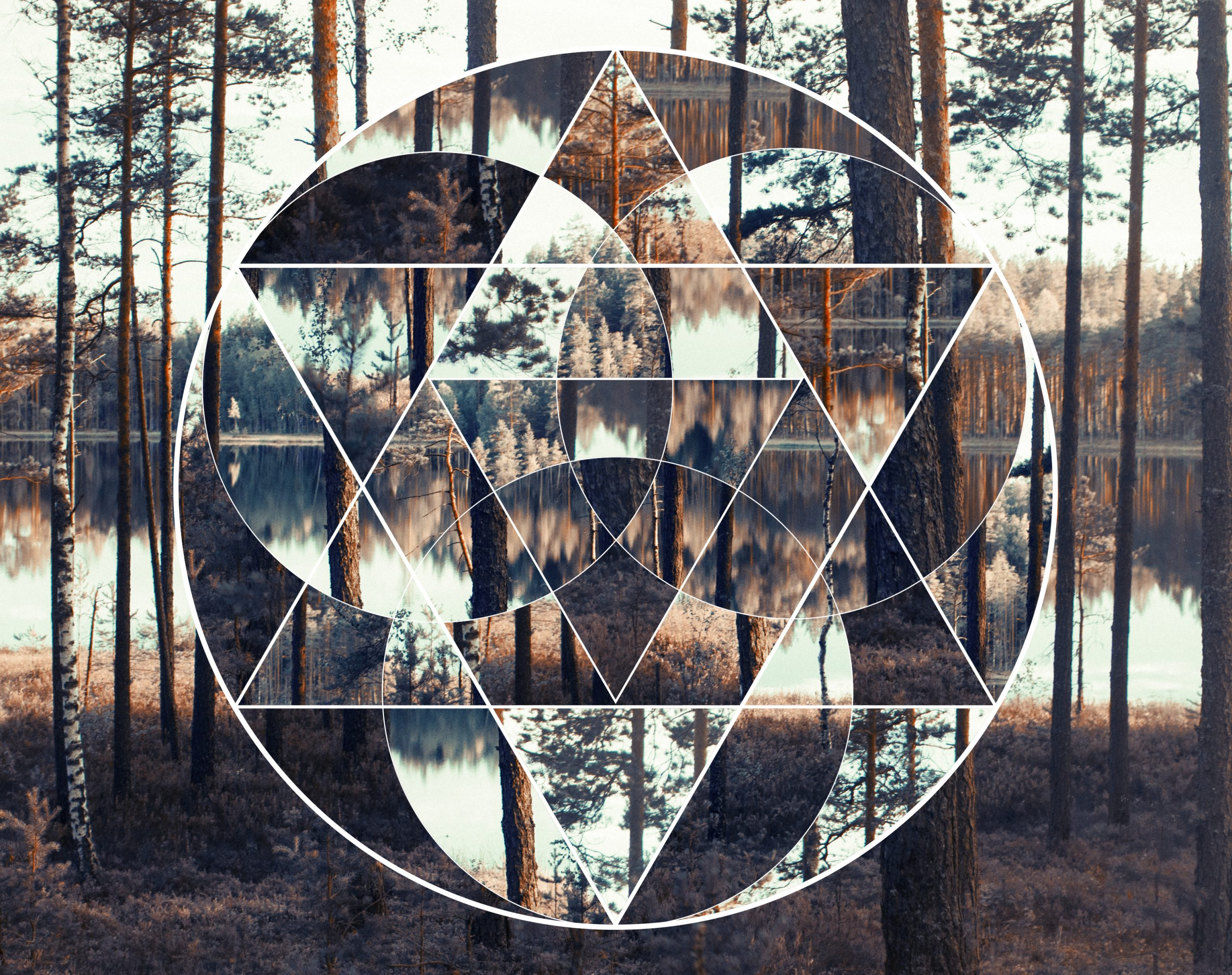 The Anchorite Rites Return | Alchemical Rituals and Global Transformation Through Social Distancing