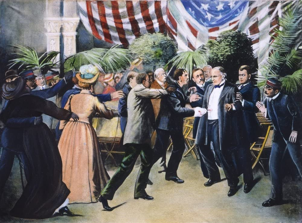 Amazon.com: Mckinley Assassination Nthe Assassination Of President ...