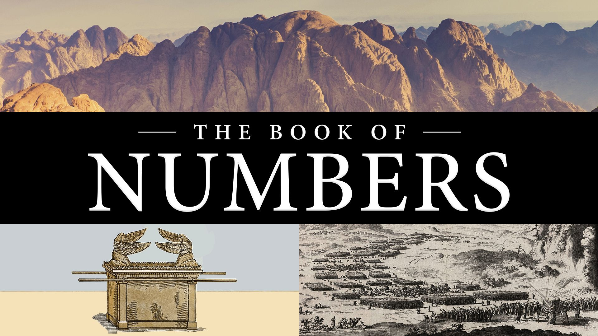 The Book of Numbers | ISOW