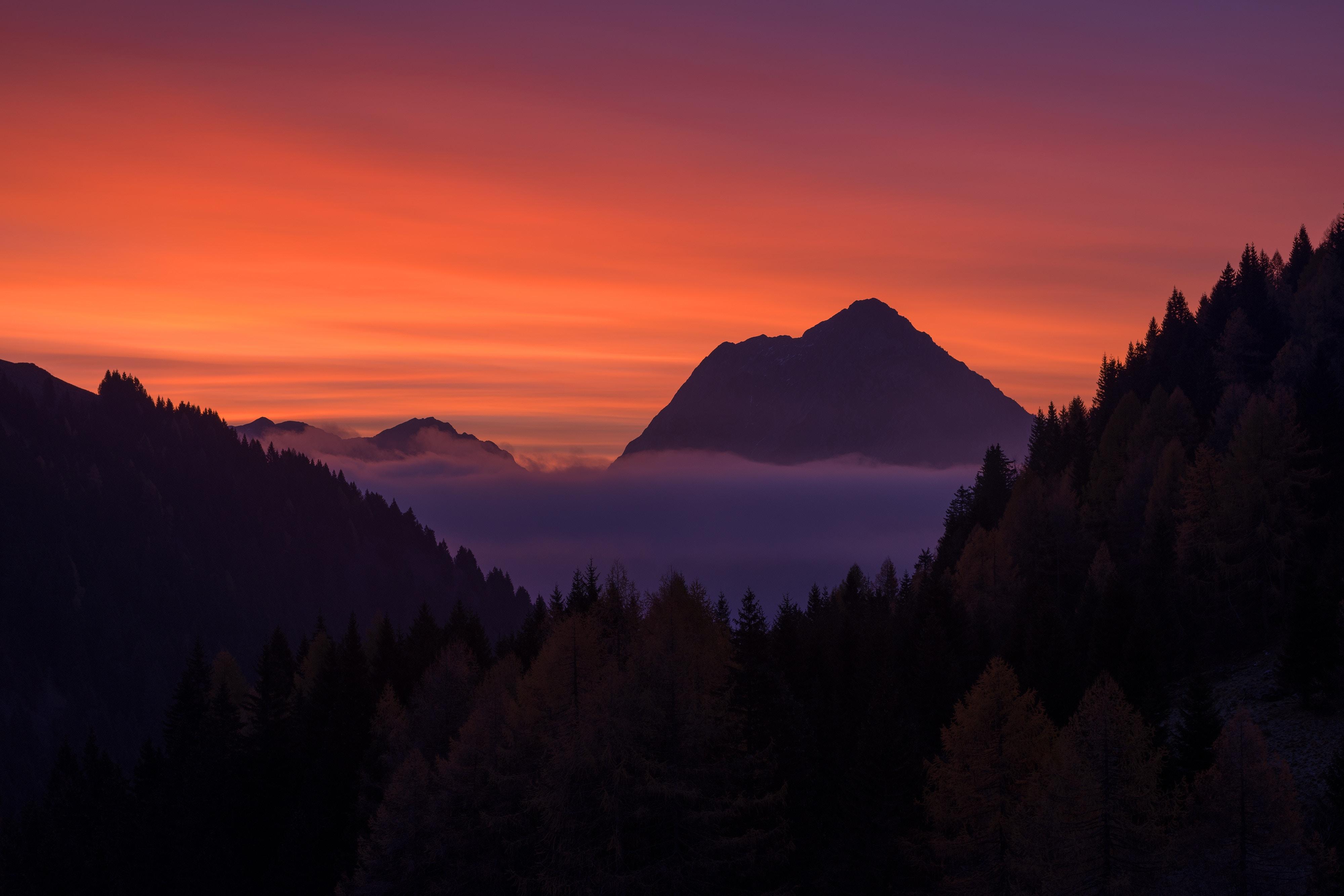 5391777 4000x2667 #woodland, #tree, #nature, #sunrise, #sunset, #sky, # mountain layers, #mountain ridge, #orange, #mountain line, #mountain, # sunset sky, #morning, #night, #mountain peak, #cloud, #dark, #Free pictures, #seacloud, #forest, #orange sky ...