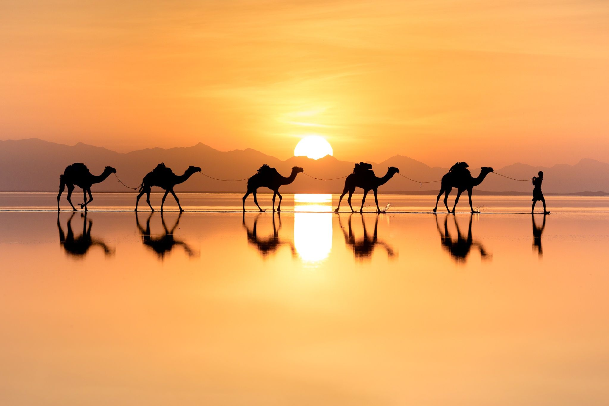 Caravan Train | Earth pictures, Photo, Sunset pictures