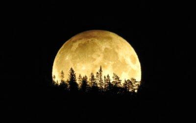 Wheel Within a Wheel: YHUH's Clock in the Heavenly Luminaries